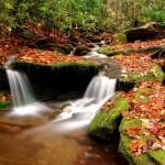 Toamna 4  (Wesser_Creek_in_Autumn,_Nantahala_National_Forest)