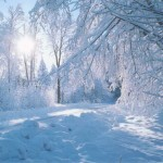 Iarna 23