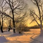 Iarna 30