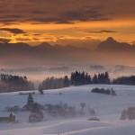 Iarna 31