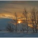 Iarna 21