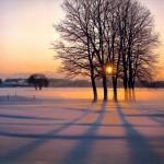 Iarna 22