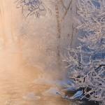 Iarna 25
