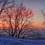 Iarna 27