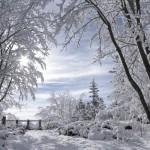 Iarna 28