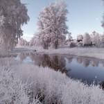 Iarna 36