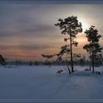 Iarna 4