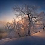 Iarna 7
